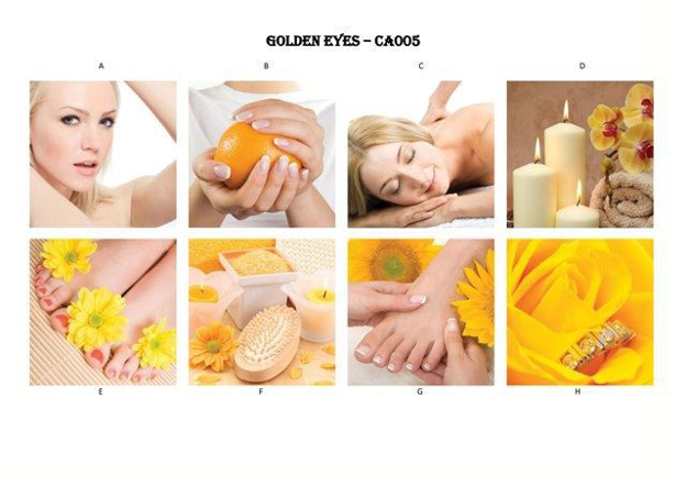 Picture of GOLDEN EYES Canvas-005
