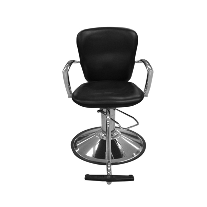 Picture of EKHO Styling Chair